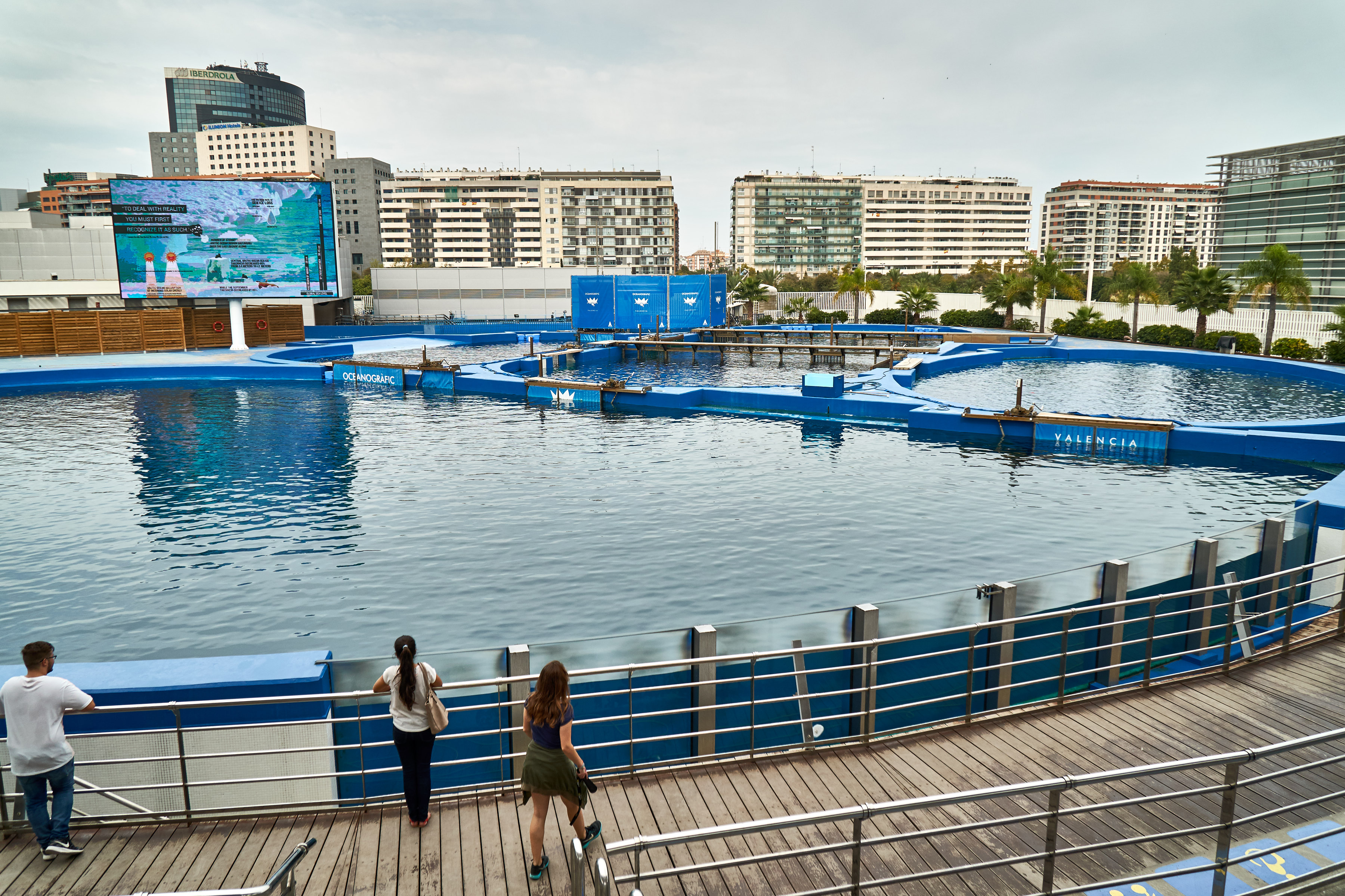 Shot of the entire dolphinarium