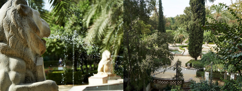 """""""Jardin de leones"""", a part of the """"parque de María Luisa"""""""